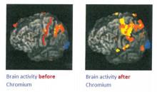 クロムと脳機能について
