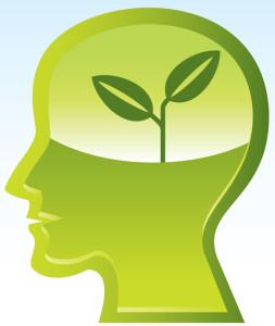 今日は、脳に栄養を与えましたか?