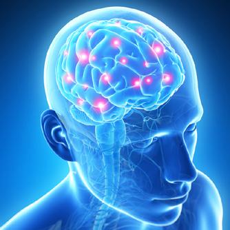 神経毒から脳を守ろう