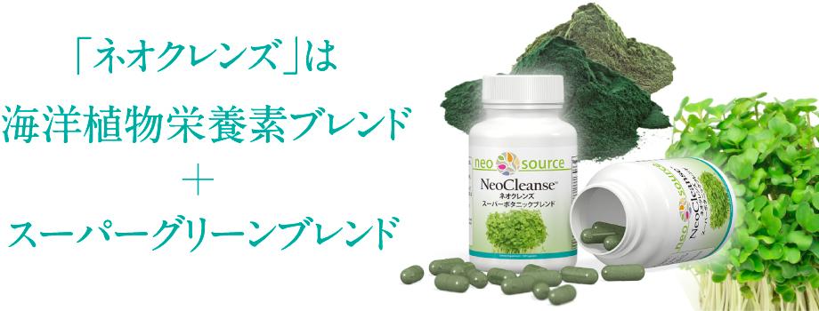 植物栄養素があなたの体をダメージから守る!スーパーボタニックブレンド