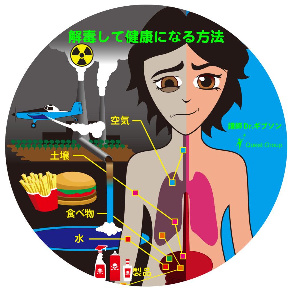 【DVD】放射能汚染と有害物質から子どもたちを守ろう!